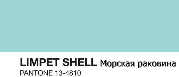 цвет limpet shell
