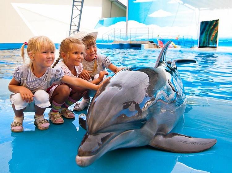 дети в дельфинарии