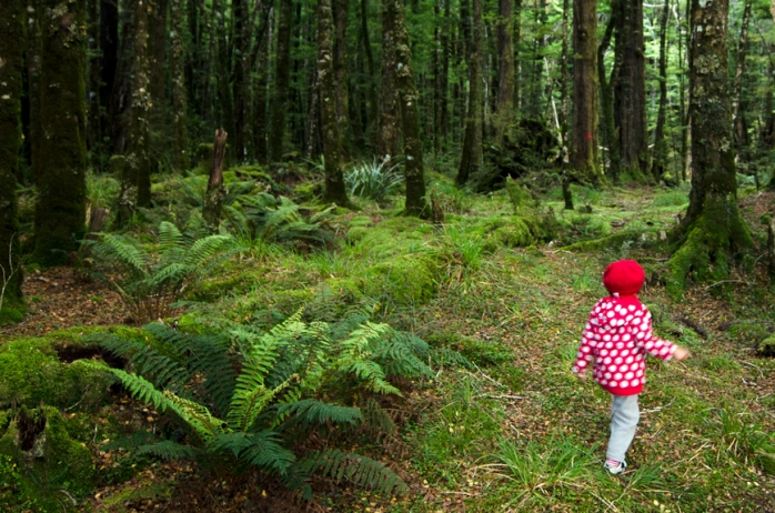 lost child in the woods rhetorical In richard louv's essay titled last child in the woods, louv uses a hyperbole, an anecdote, and imagery to convey how mankind is losing his connection with nature one of the major strategies that louv uses is a hyperbole.