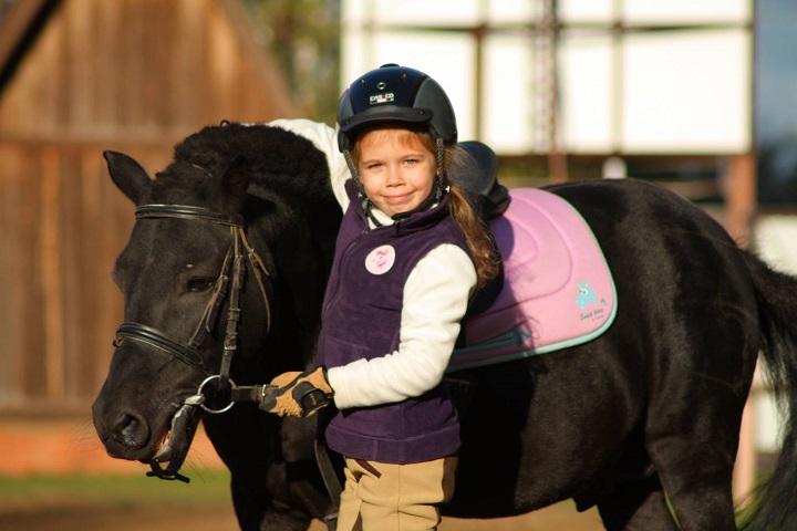секция конного спорта